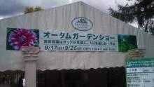 Chie Muramoto の『花のある暮らし』-1316415897297.jpg