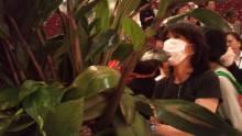 Chie Muramoto の『花のある暮らし』-1318826283153.jpg