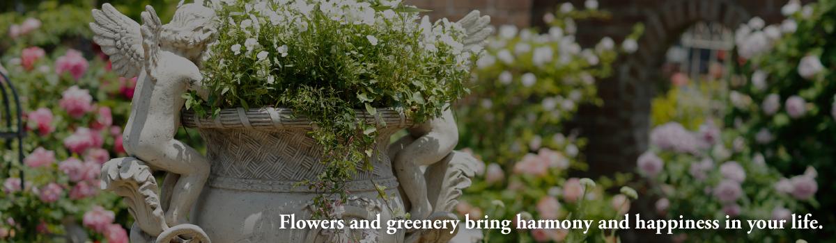 Draw:Gardenのフラワー・ガーデンデザイナーChie Muramotoによるブログ