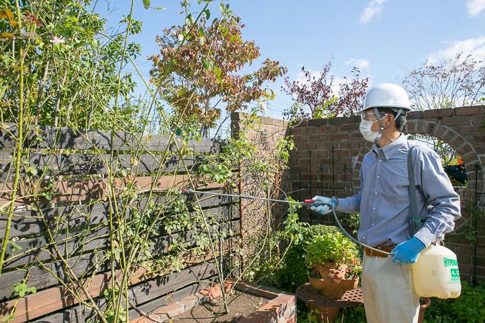 庭の年間管理 定期的な手入れで庭を綺麗に