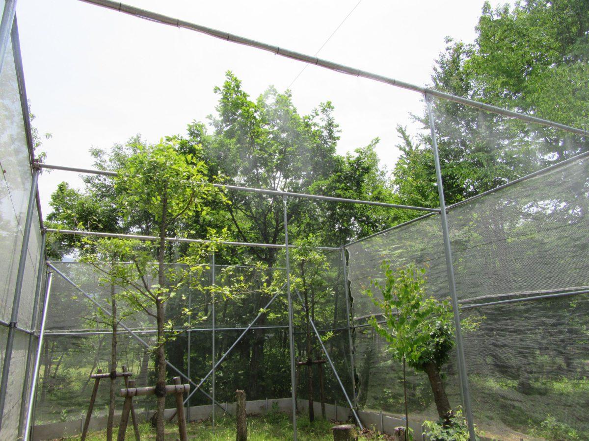 夏の暑さ対策にミストシャワー